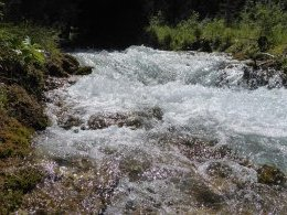 Torrent de la Rosière