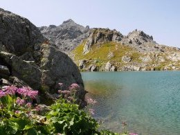 Laghi del Tachuy - Lac n°3.