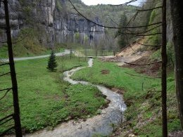 Le long des gorges du Furon...