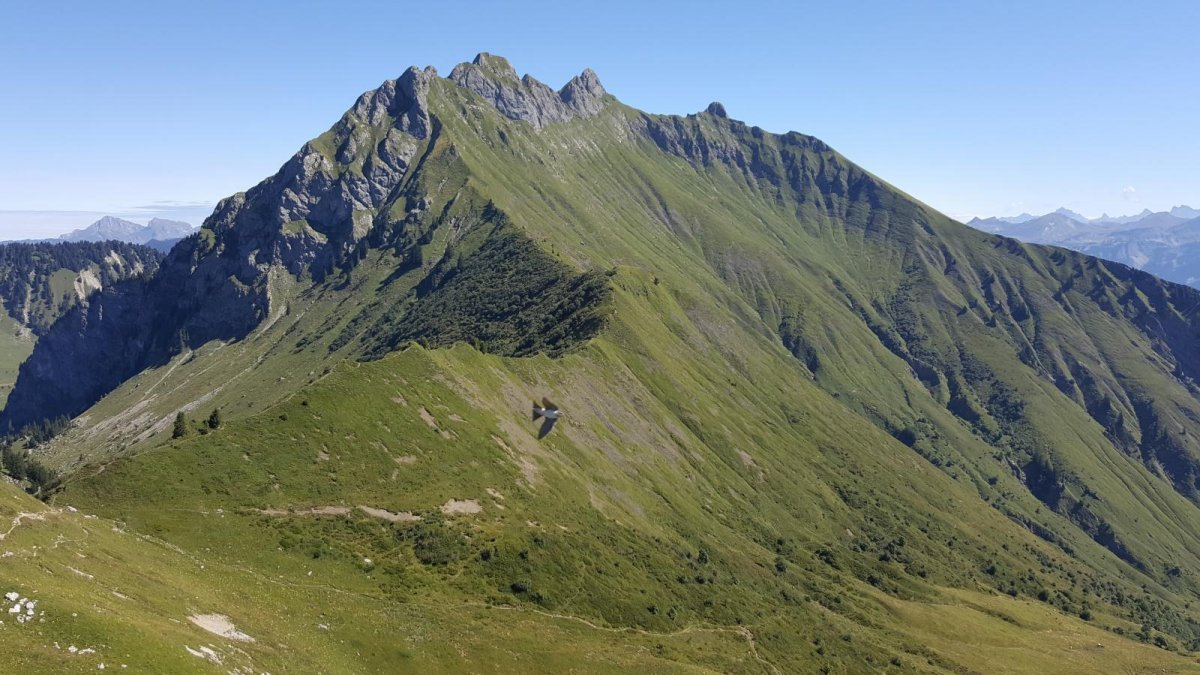 Le Massif du Roc d'Enfer
