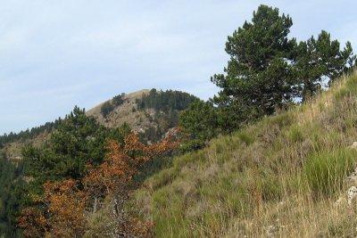 Banne et le Roc de la Tour offrent un panorama de toute beauté surtout en cette journée propice à l'émerveillement.