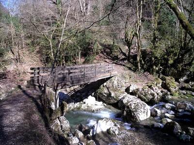 Passerelle de la Gaffe sur La Drevenne