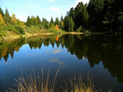 Les étangs de Prélager.