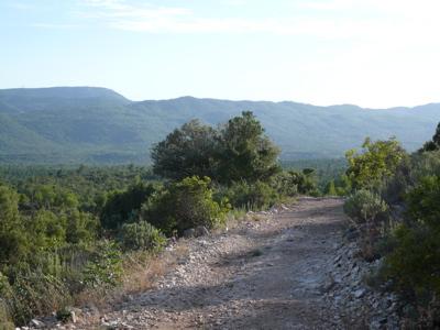 Le chemin de crête de la colline.