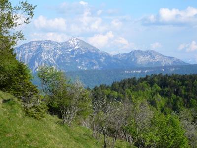 Colombier et Rochers de la Bade depuis la montée au Crêt de la Dolca.