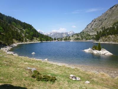 L'étang des Bésines