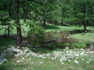Du vert, du vert, et encore du vert... et au milieu coule une rivière...
