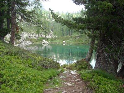 Un petit lac émeraude au beau milieu des arbres, voilà ce qui vous attend !