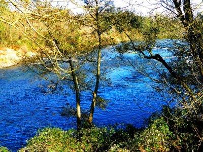 La Loire, fleuve sauvage.