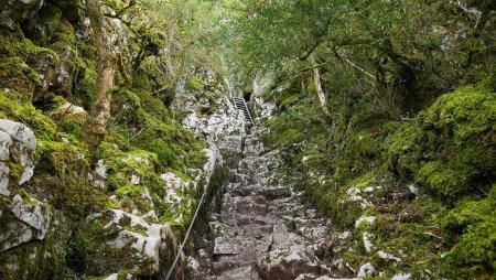 """Résultat de recherche d'images pour """"grotte de judry"""""""